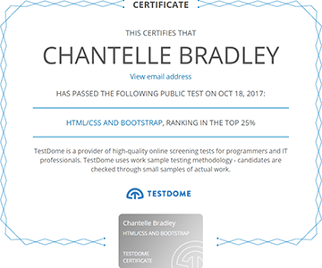 Testdome Certification - HTML, CSS and Bootstrap - top 15%